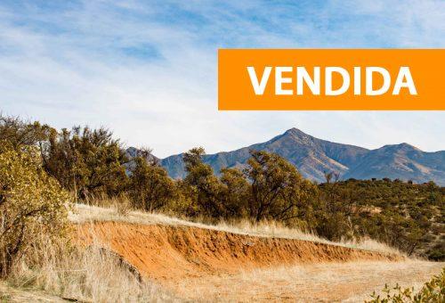 Hacienda Entrevalles Parcela Nº206