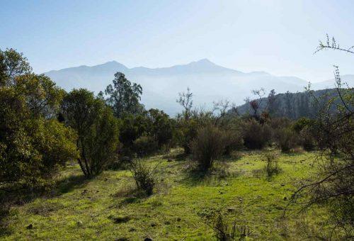 Parcela plana Nº41 Hacienda Entrevalles II