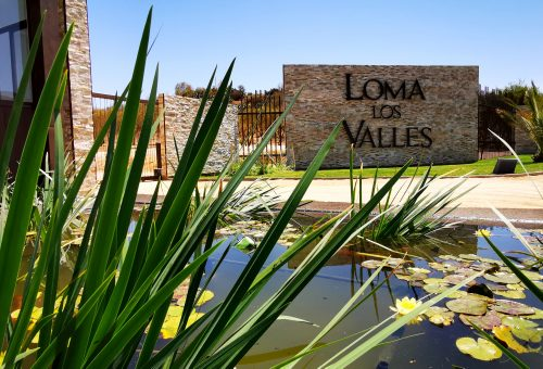 Últimas parcelas de 5.000 m2 en exclusivo condominio Loma Los Valles