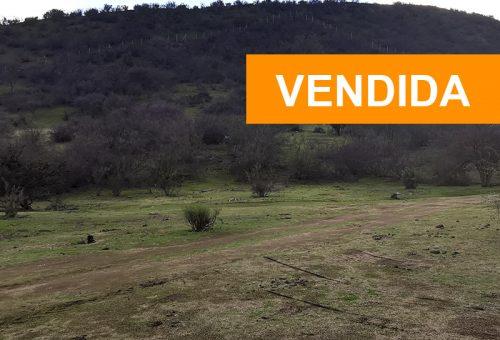 Parcela de 2ha Nº19 semiplana condominio Hacienda Entrevalles 2
